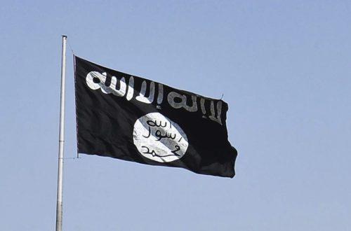 Article : Veut-on vraiment faire la guerre à l'État islamique ?
